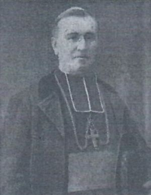 Mgr Dominique Castellan
